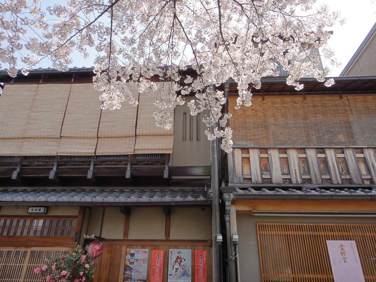 f:id:kyotoburari:20190317104114j:plain