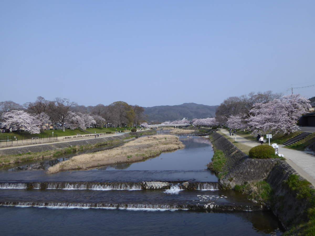 f:id:kyotoburari:20190407113528j:plain