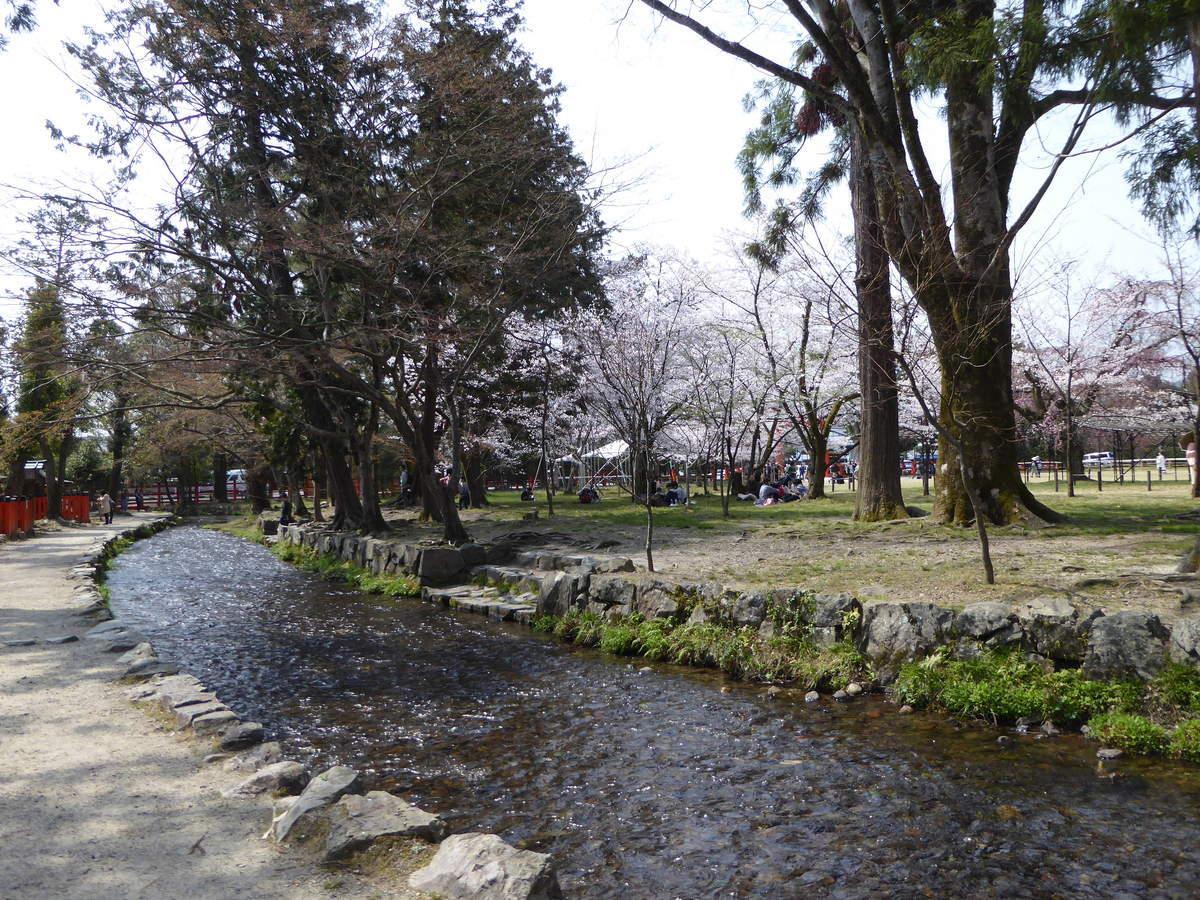 f:id:kyotoburari:20190408103434j:plain