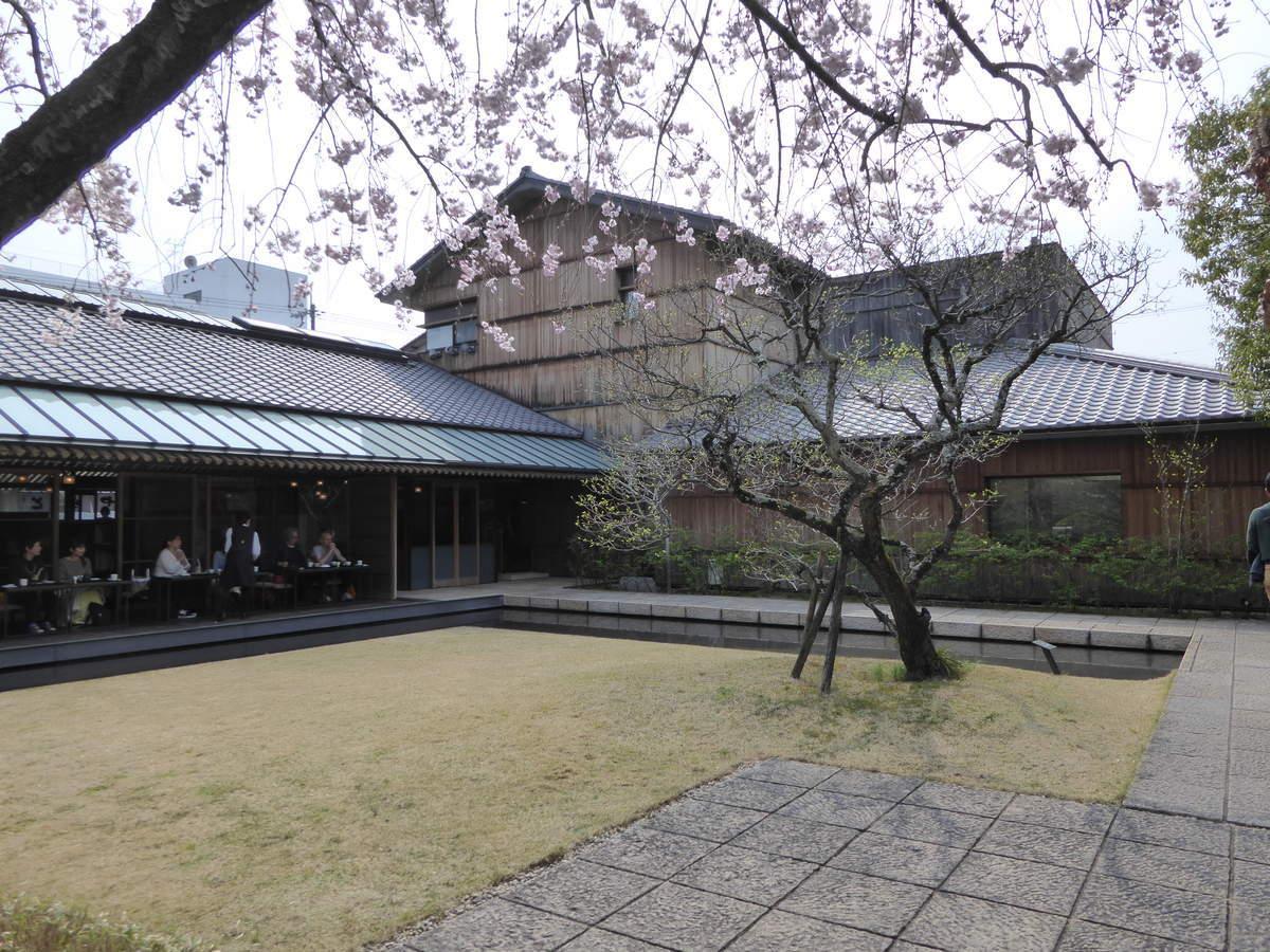 f:id:kyotoburari:20190411071139j:plain