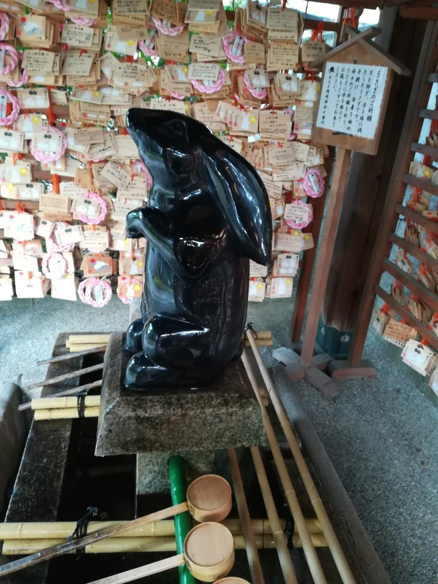 f:id:kyotoburari:20190623021520j:plain