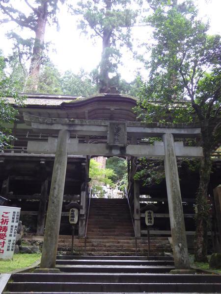 f:id:kyotoburari:20190721105827j:plain