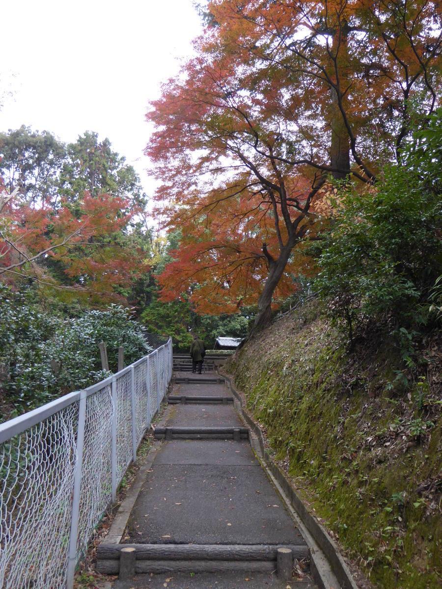 f:id:kyotoburari:20190831102125j:plain