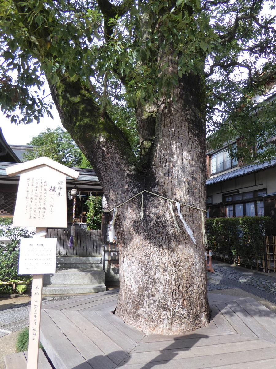 f:id:kyotoburari:20191105101319j:plain