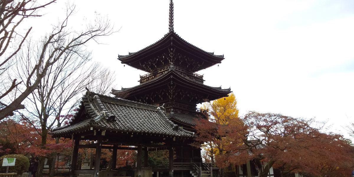 f:id:kyotoburari:20191202132426j:plain