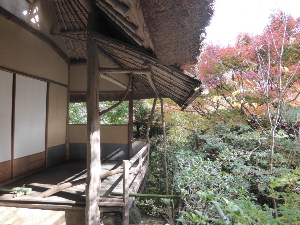 f:id:kyotoburari:20191203105429j:plain