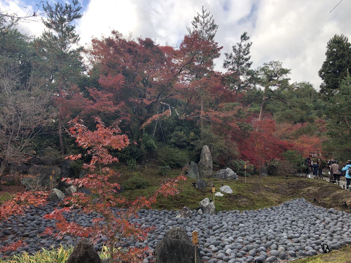 f:id:kyotoburari:20191203172218j:plain