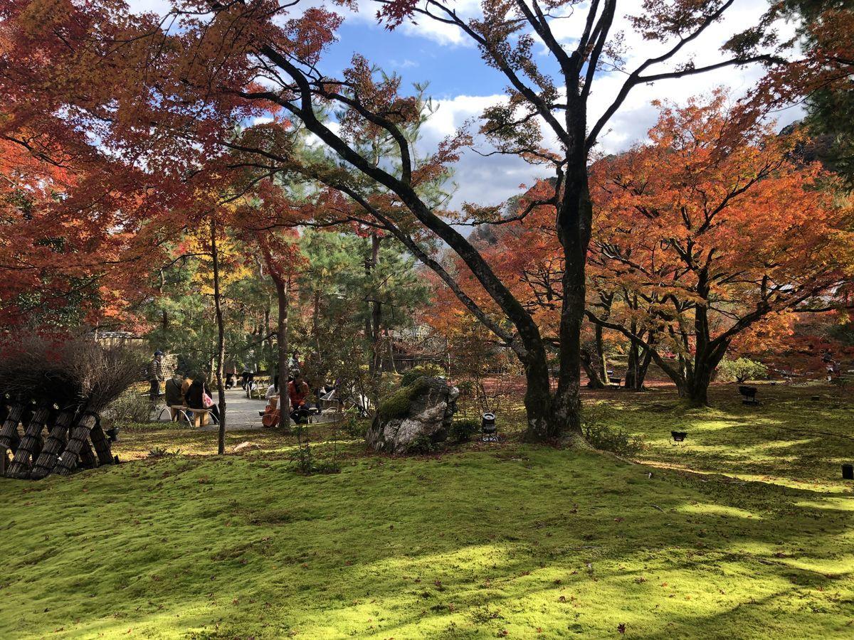 f:id:kyotoburari:20191203181825j:plain