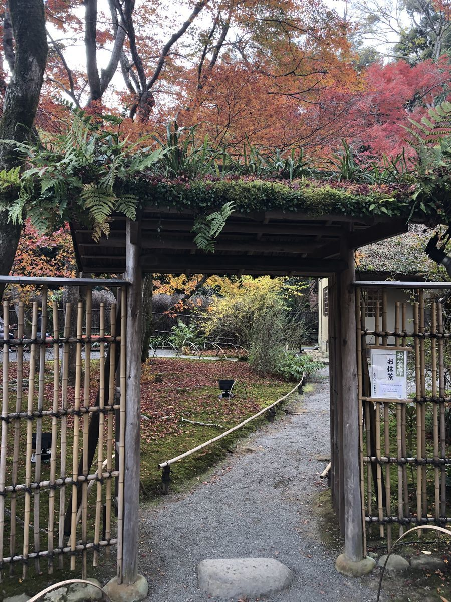 f:id:kyotoburari:20191203183528j:plain