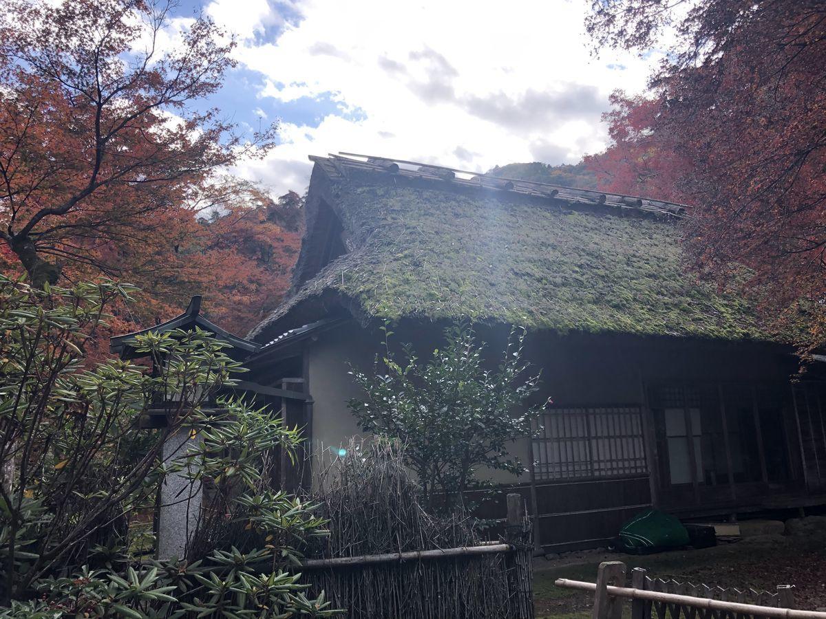 f:id:kyotoburari:20191203184256j:plain