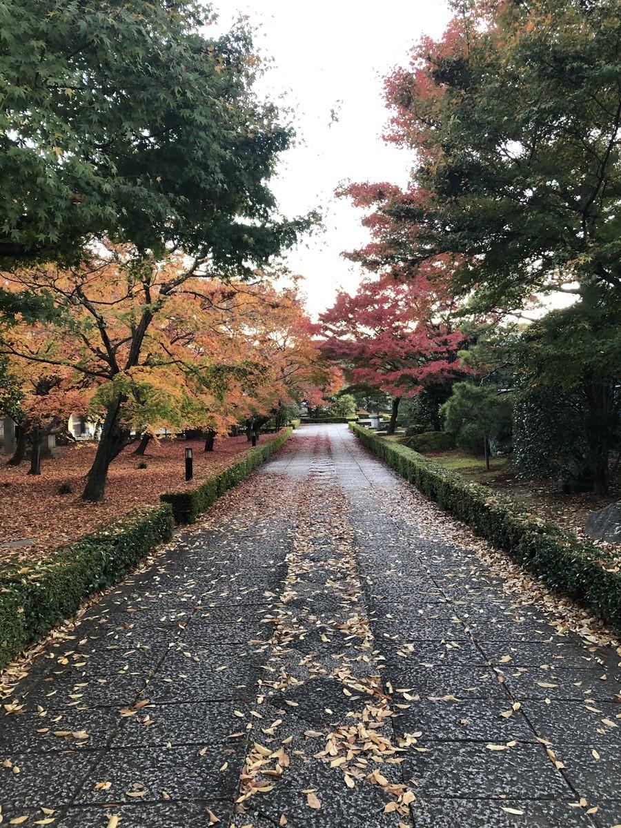 f:id:kyotoburari:20191208104315j:plain