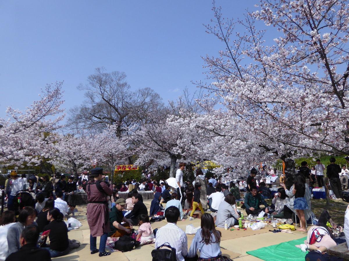 f:id:kyotoburari:20200320113028j:plain