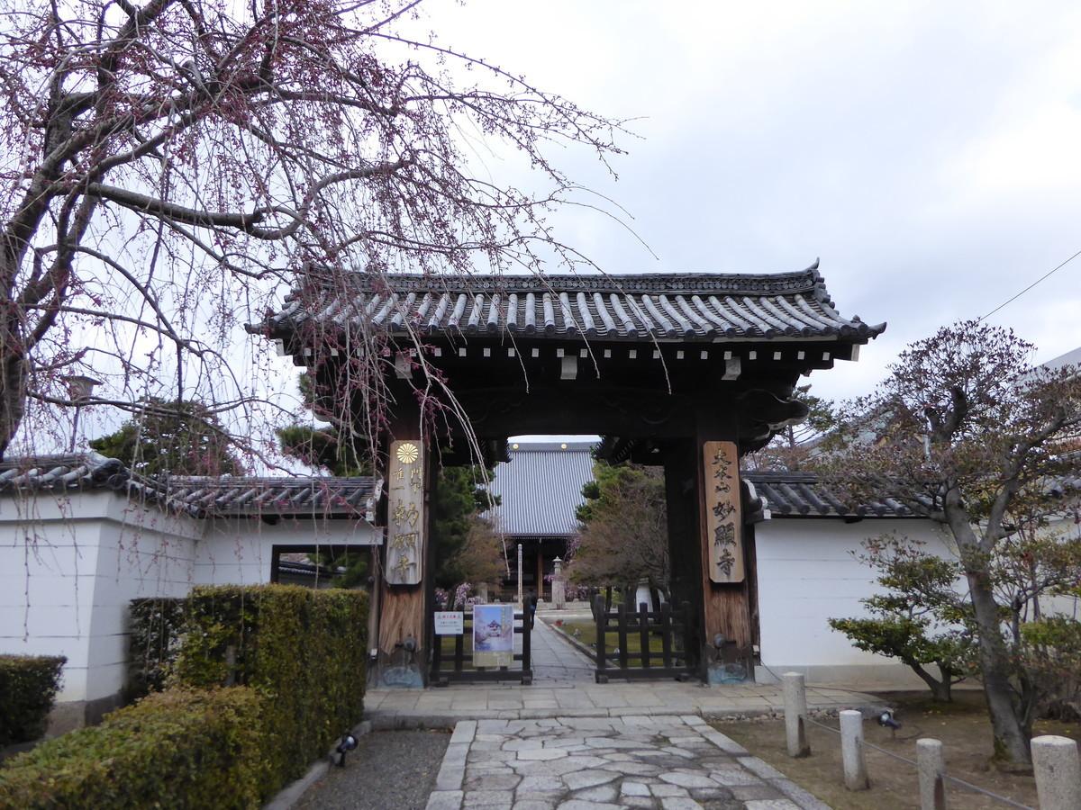 f:id:kyotoburari:20200414152621j:plain