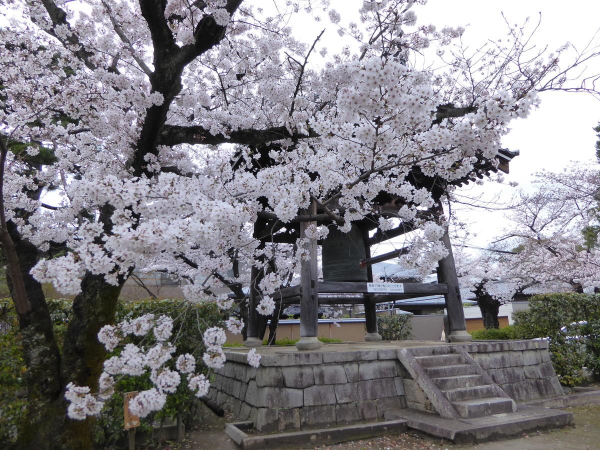 f:id:kyotoburari:20200414154447j:plain