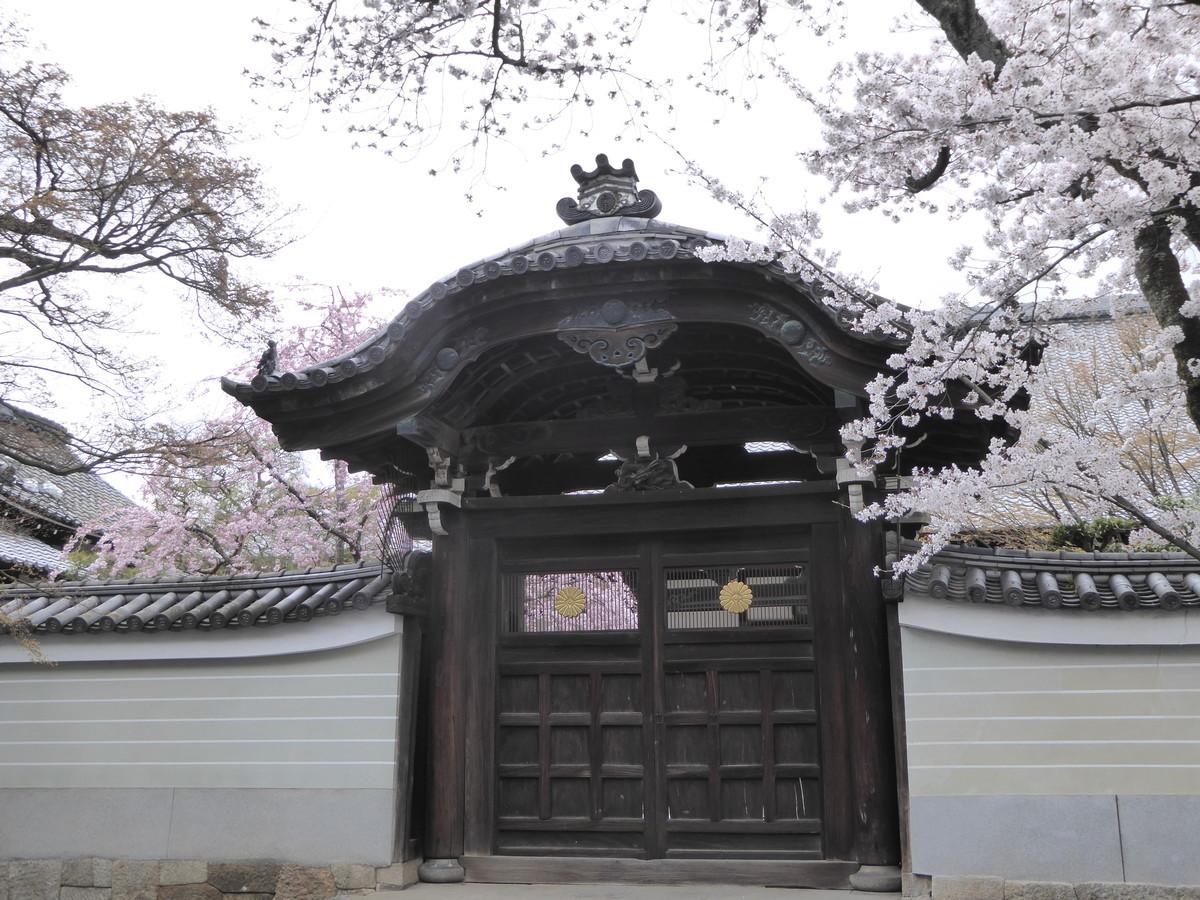f:id:kyotoburari:20200414162614j:plain