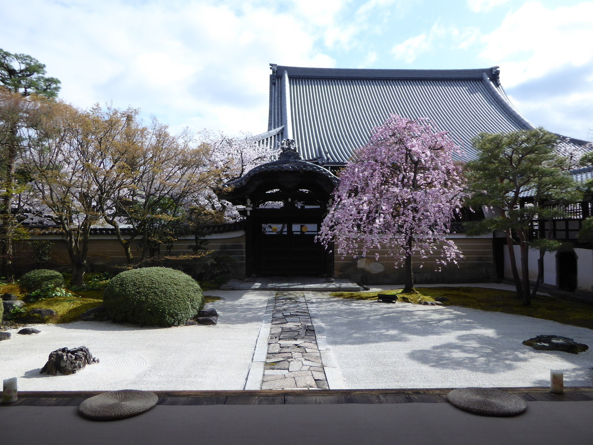 f:id:kyotoburari:20200416151449j:plain