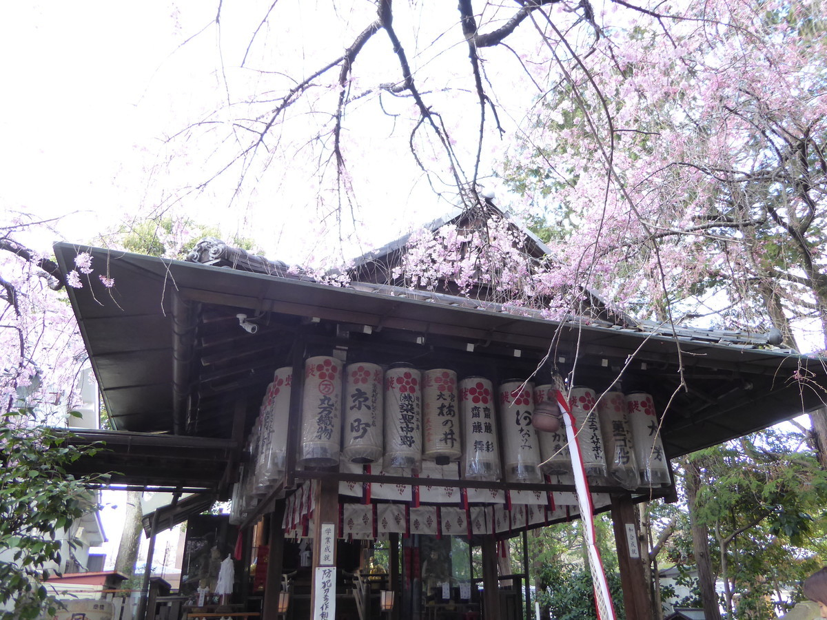 f:id:kyotoburari:20200504114605j:plain
