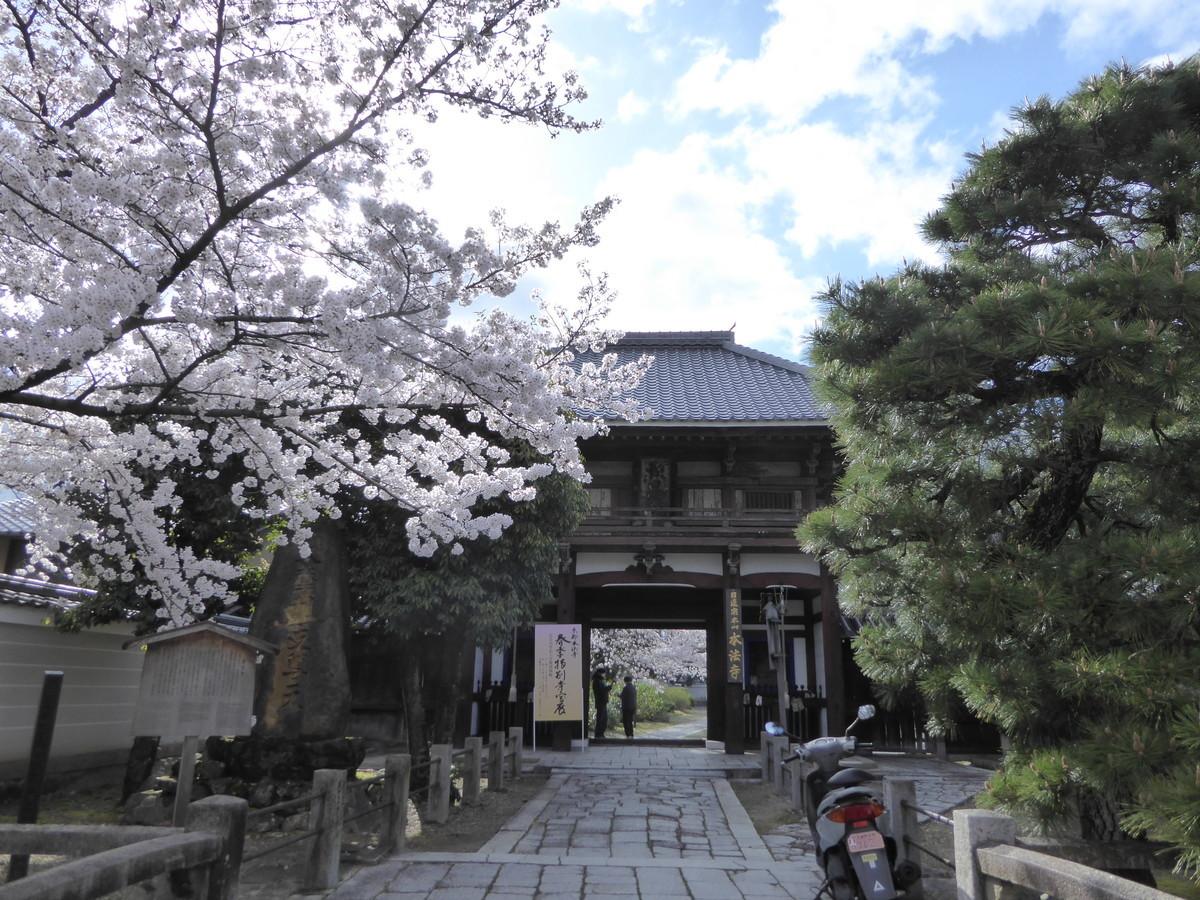 f:id:kyotoburari:20200515091937j:plain