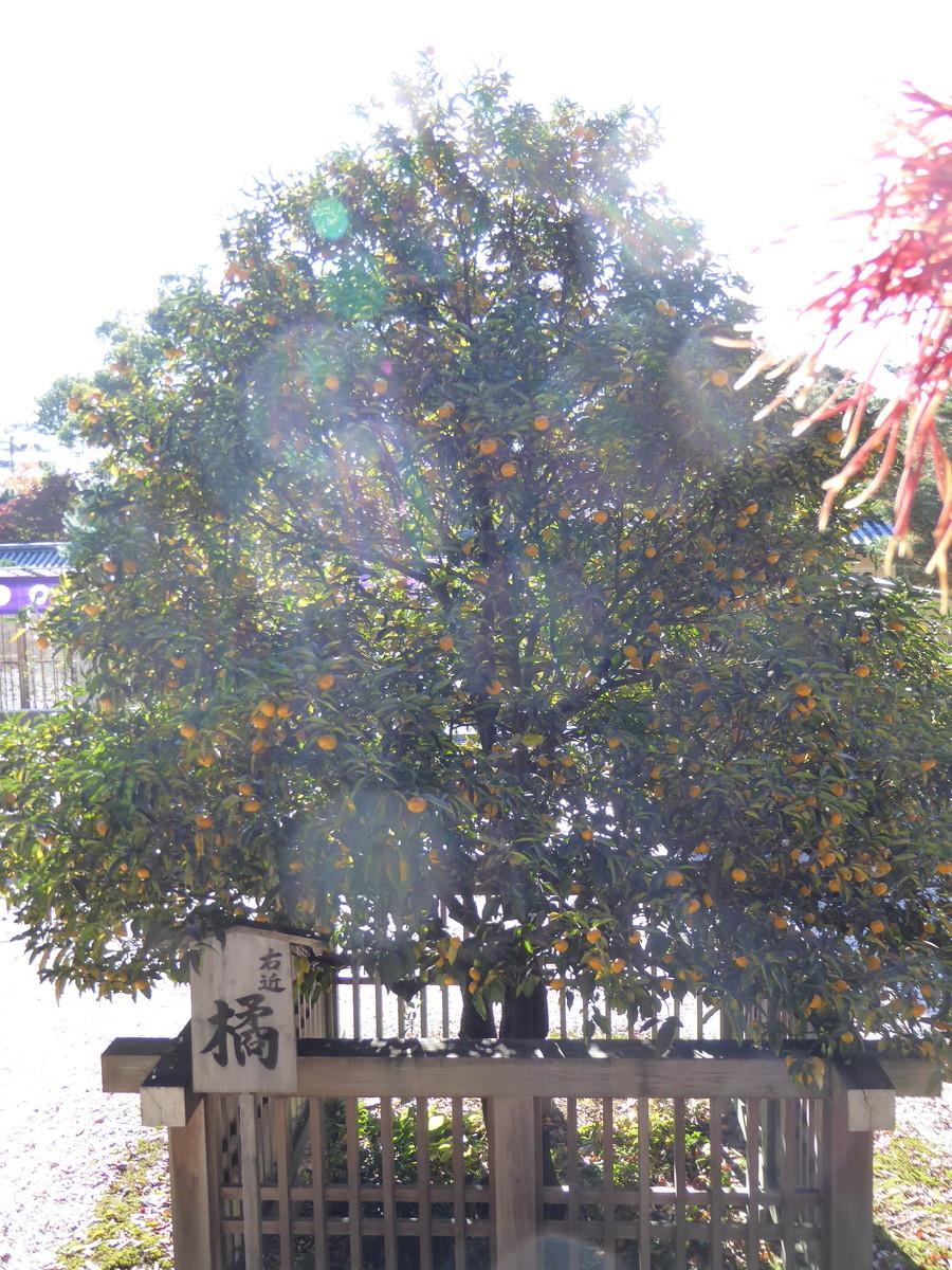 f:id:kyotoburari:20200520133914j:plain
