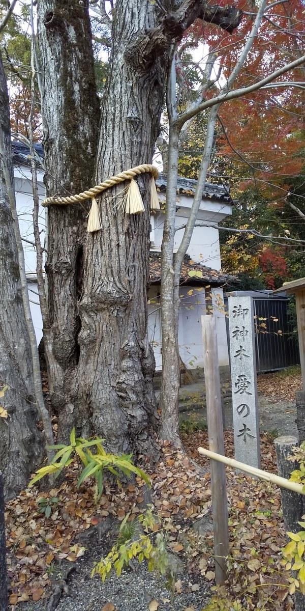 f:id:kyotoburari:20200525121150j:plain