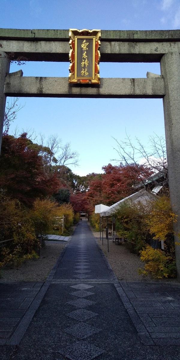 f:id:kyotoburari:20200525121845j:plain