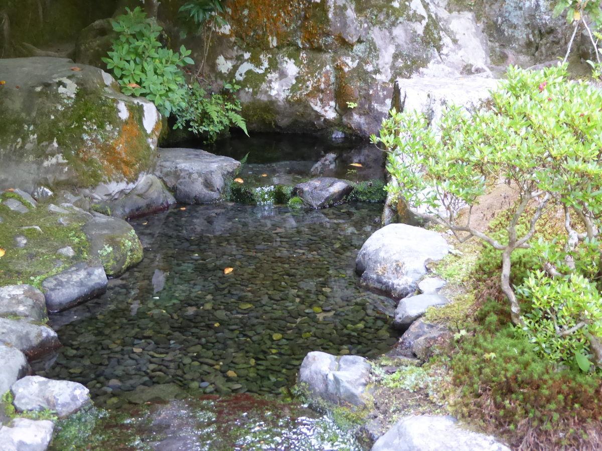 f:id:kyotoburari:20200610220201j:plain