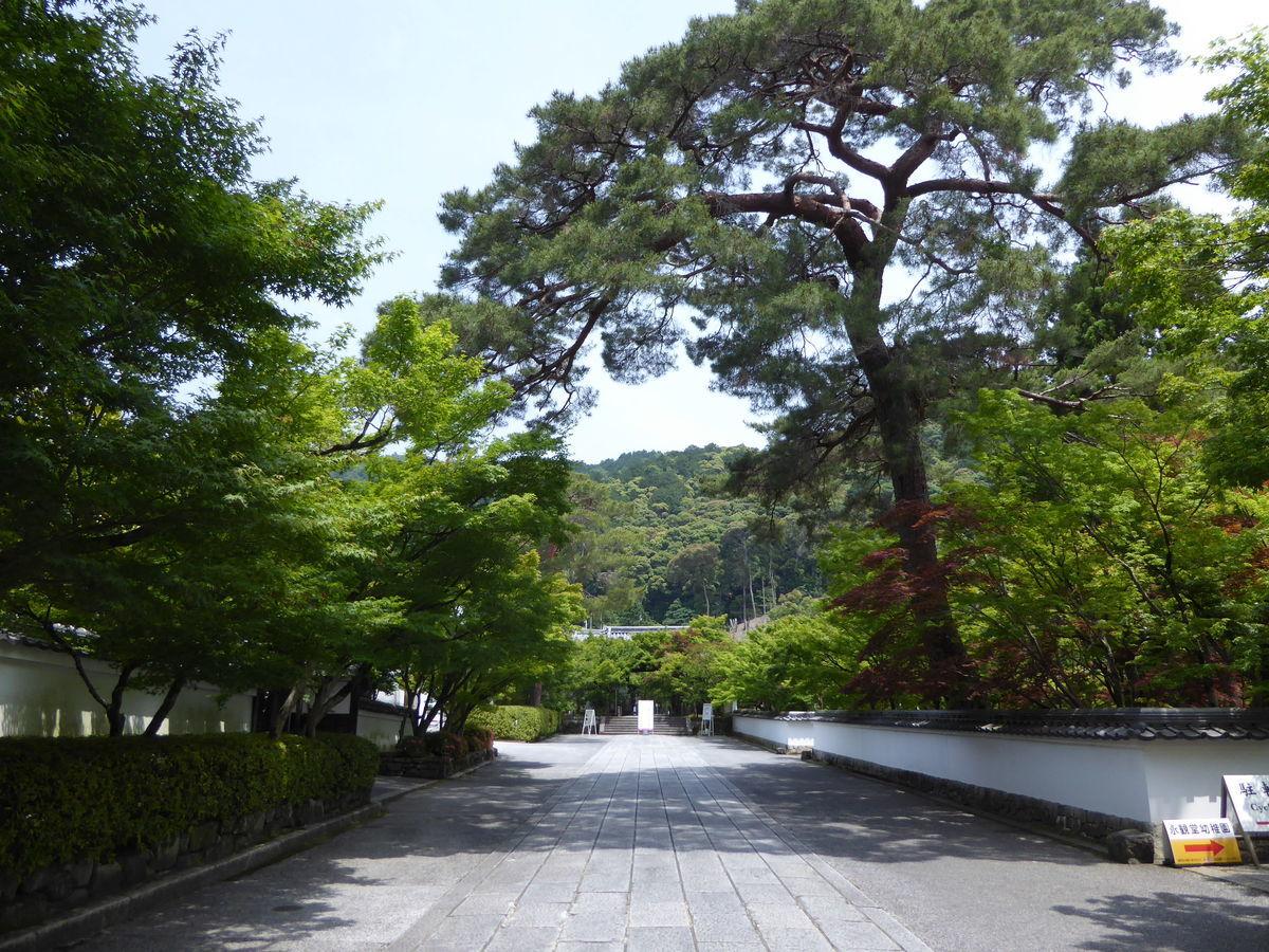 f:id:kyotoburari:20200615164721j:plain
