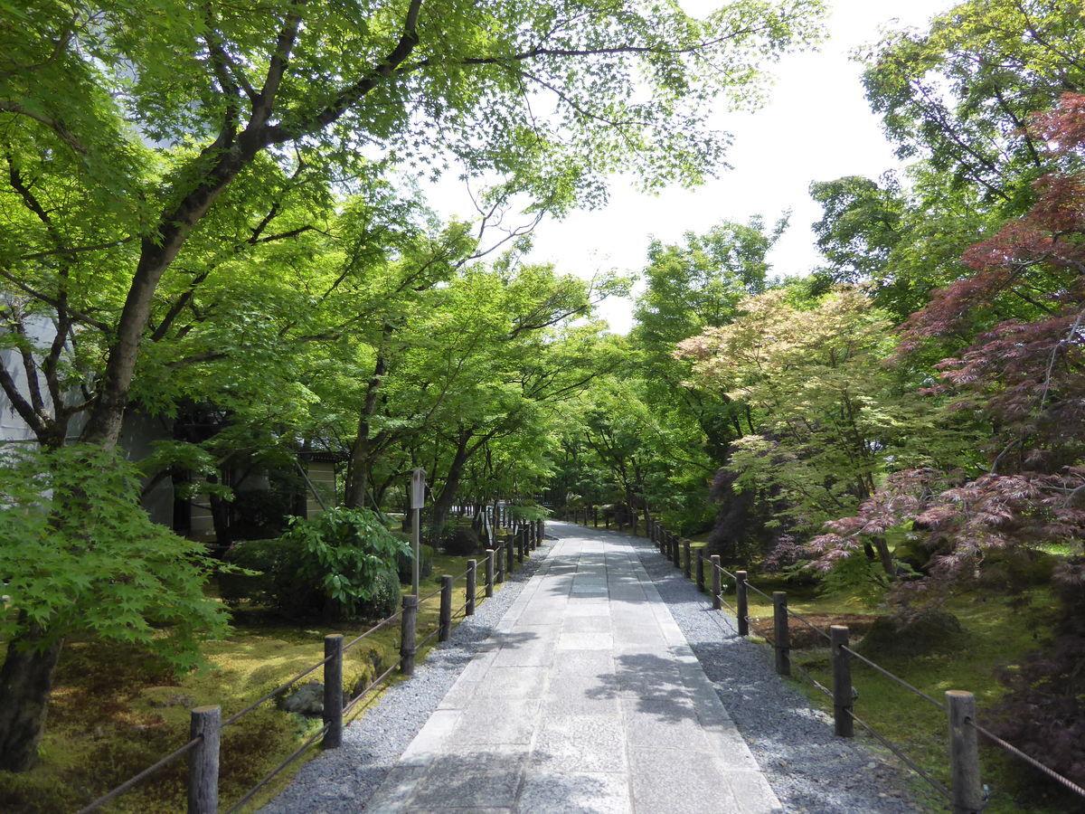 f:id:kyotoburari:20200615164746j:plain