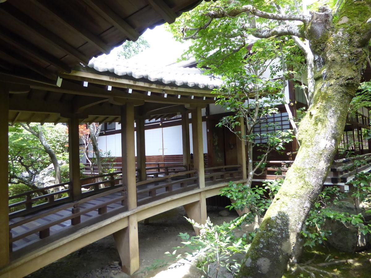 f:id:kyotoburari:20200616113934j:plain