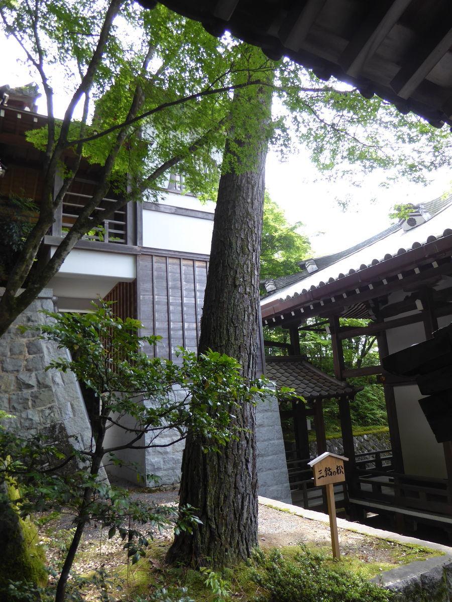 f:id:kyotoburari:20200616142438j:plain