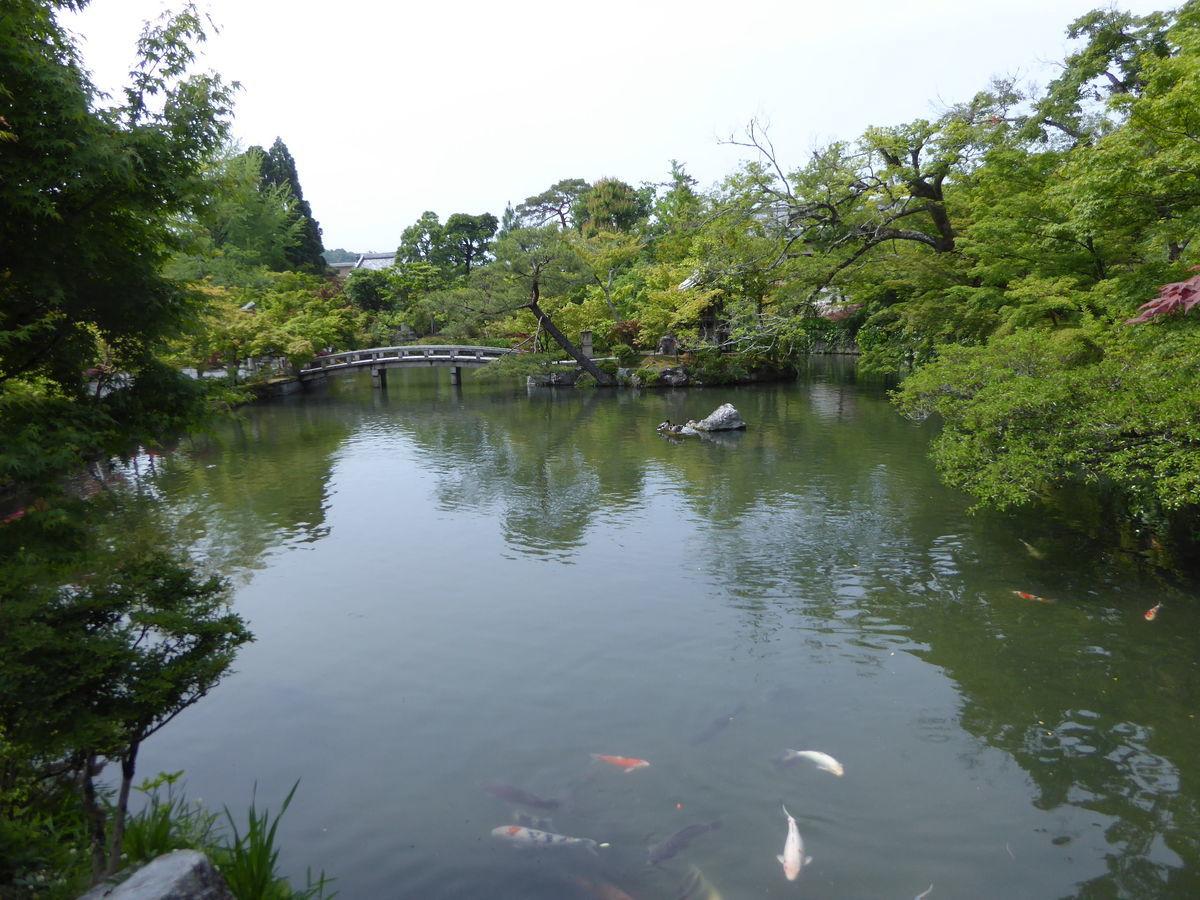 f:id:kyotoburari:20200617182037j:plain