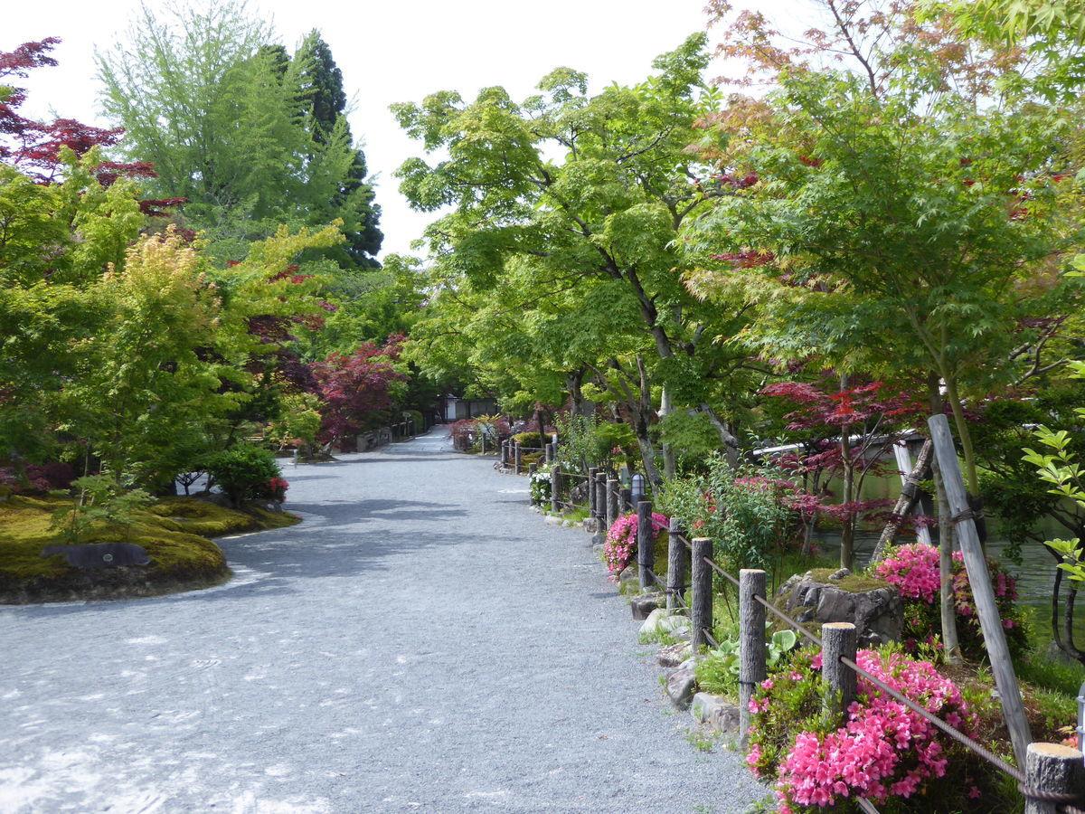 f:id:kyotoburari:20200617182111j:plain