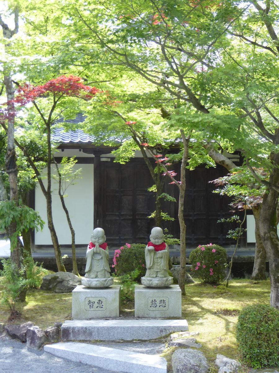 f:id:kyotoburari:20200617182142j:plain