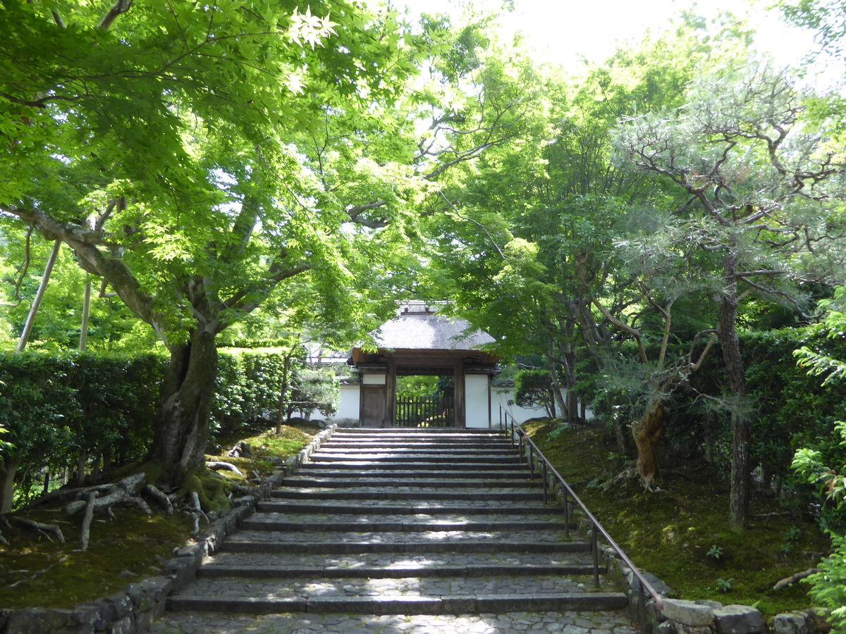 f:id:kyotoburari:20200618174210j:plain