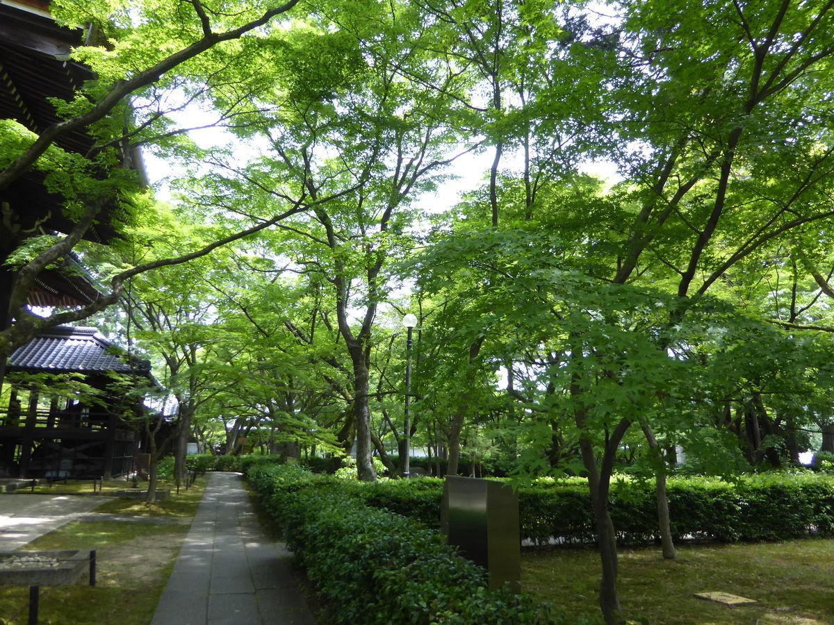 f:id:kyotoburari:20200717175312j:plain