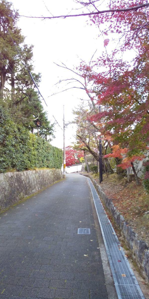 f:id:kyotoburari:20200924090037j:plain