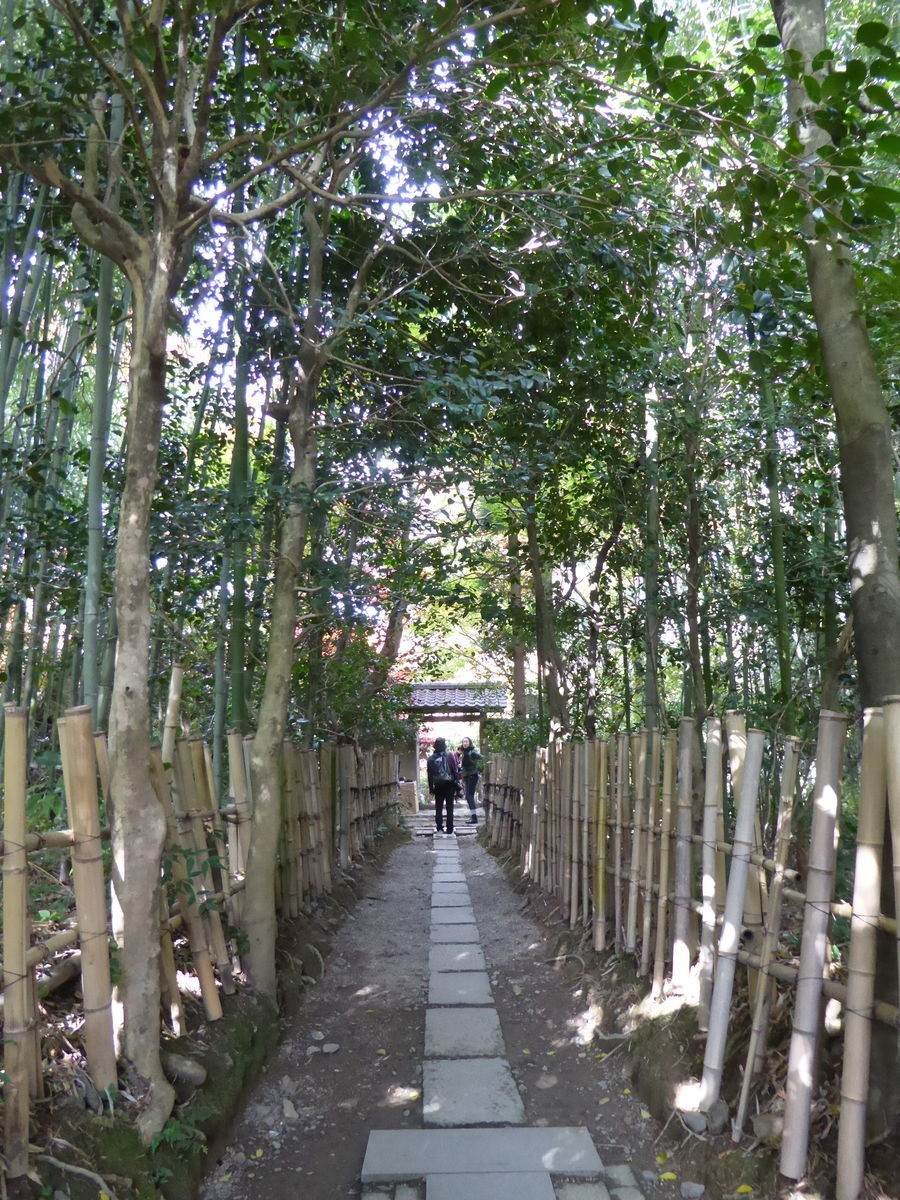 f:id:kyotoburari:20201111135428p:plain