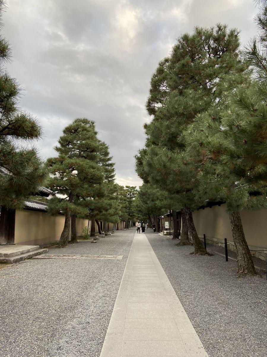 f:id:kyotoburari:20201202082436j:plain