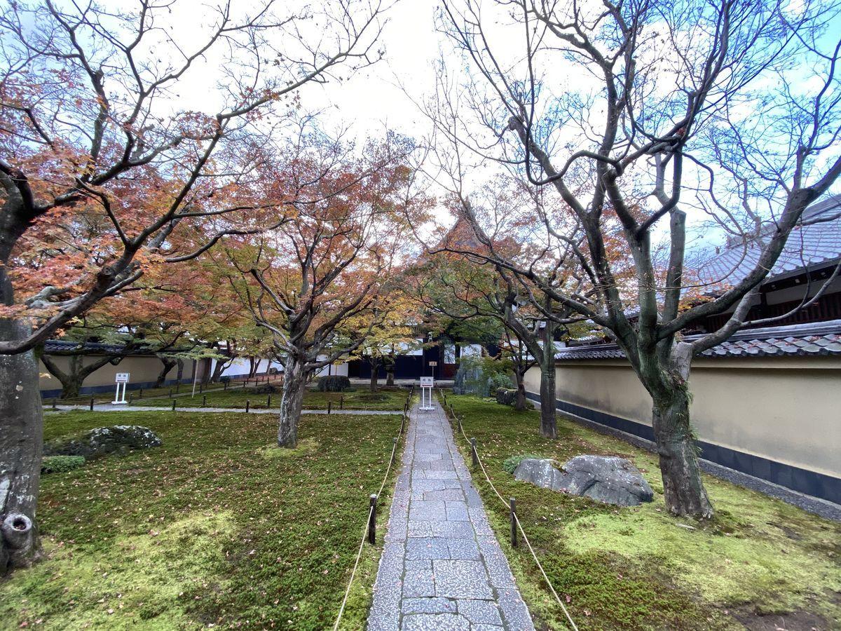 f:id:kyotoburari:20201203082756j:plain