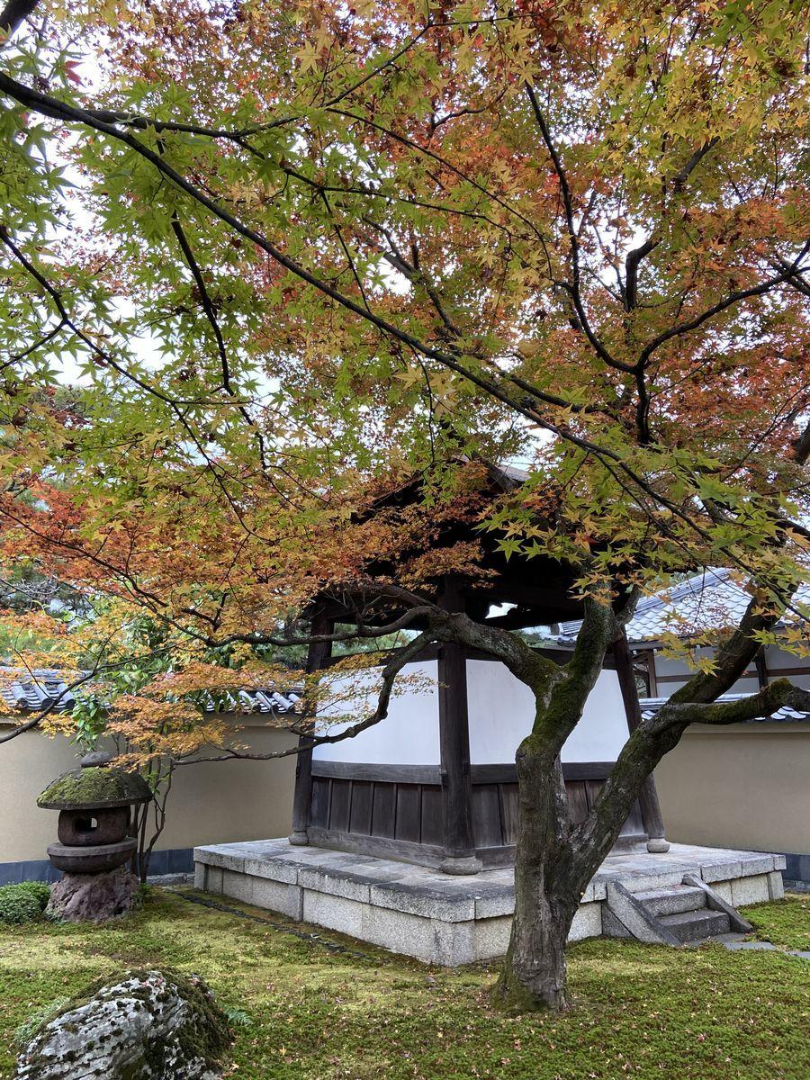 f:id:kyotoburari:20201203084922j:plain