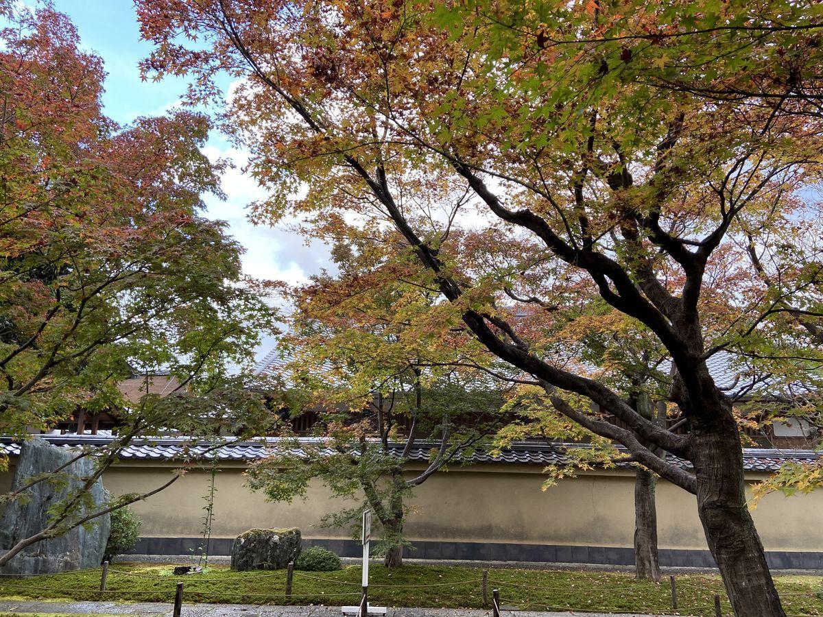f:id:kyotoburari:20201203084946j:plain
