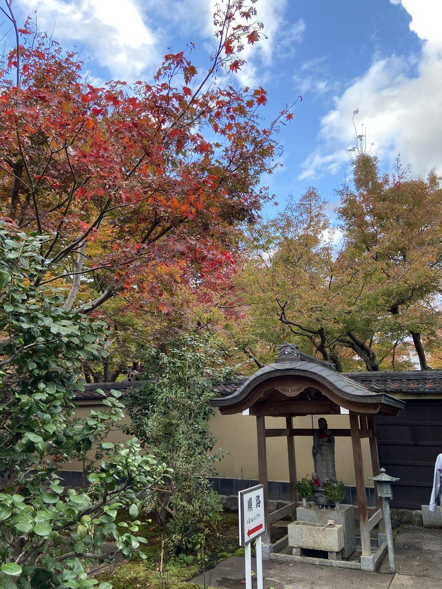 f:id:kyotoburari:20201203085035j:plain