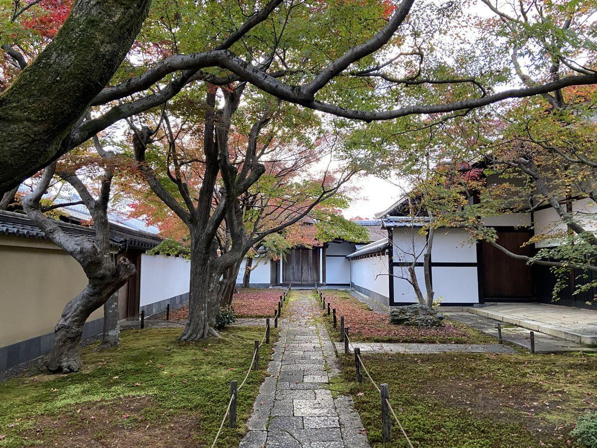 f:id:kyotoburari:20201205084258j:plain