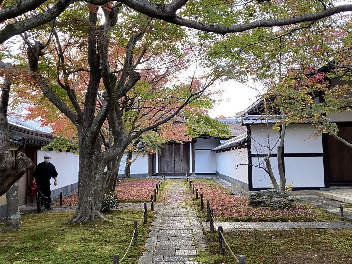 f:id:kyotoburari:20201205085508j:plain