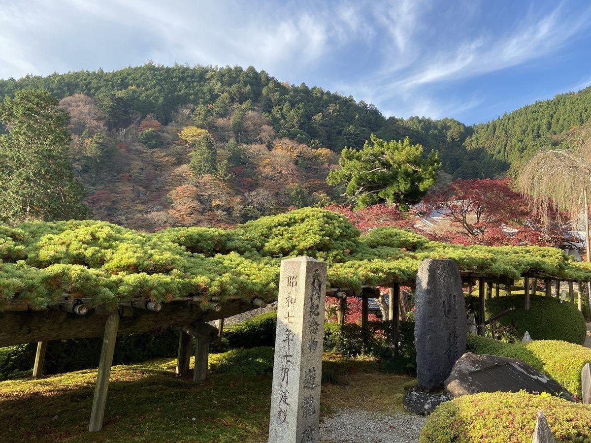 f:id:kyotoburari:20201215094407j:plain