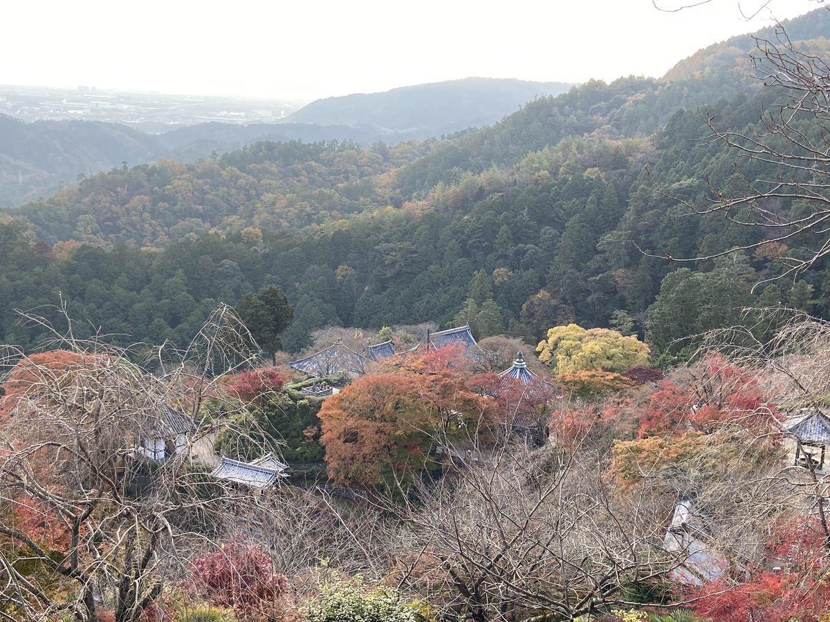 f:id:kyotoburari:20201217105128j:plain