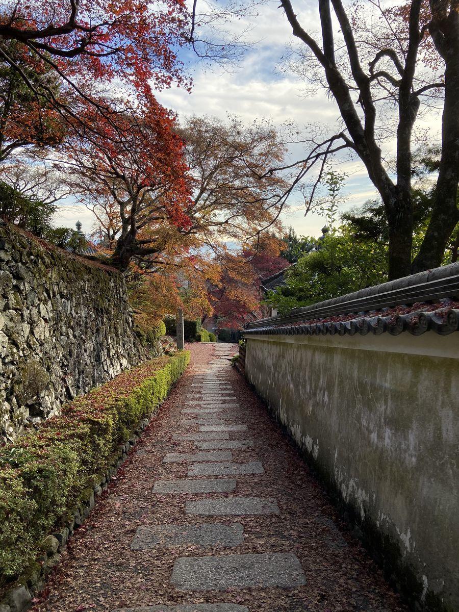 f:id:kyotoburari:20201217141127j:plain