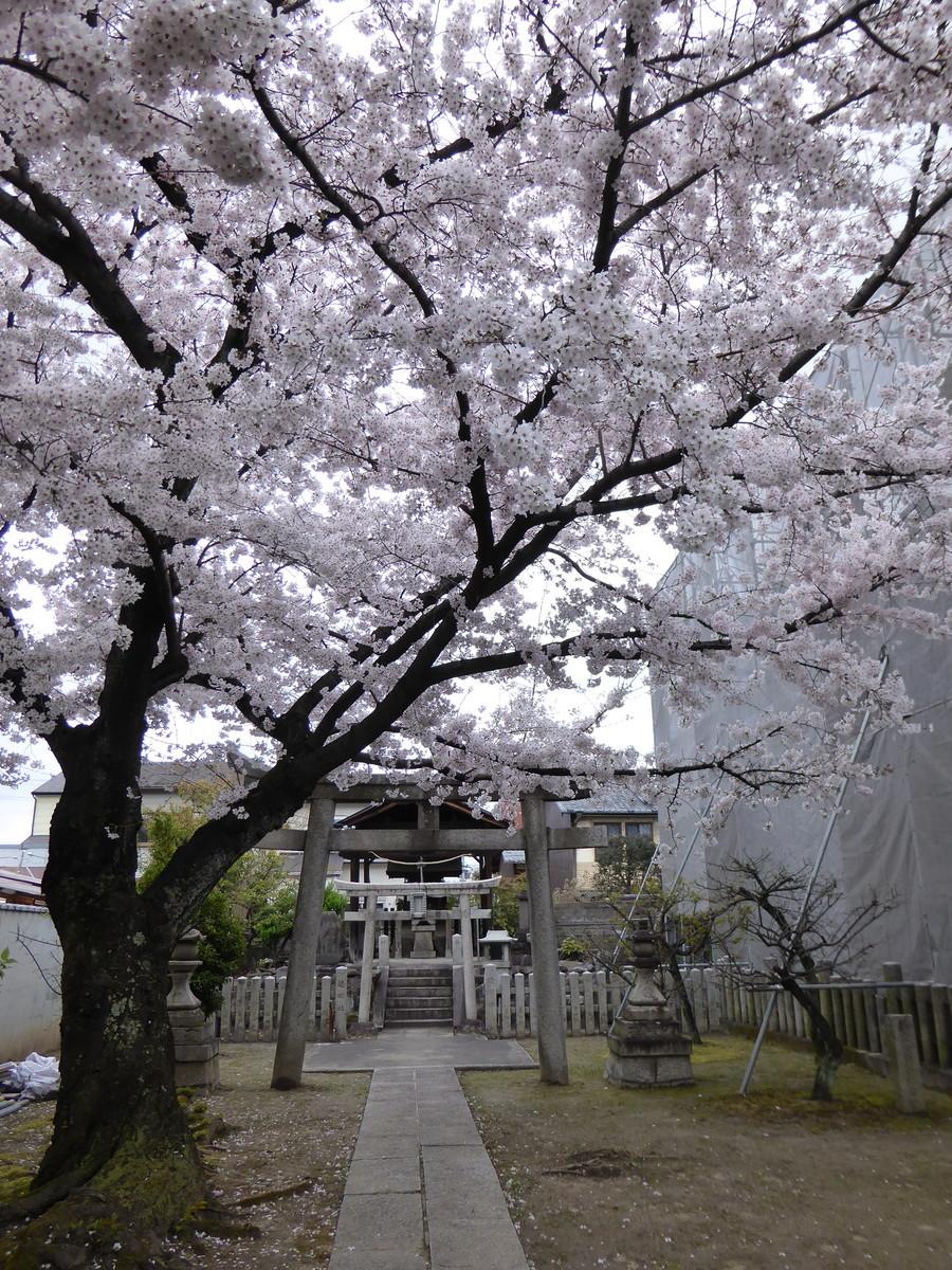 f:id:kyotoburari:20210322102813p:plain