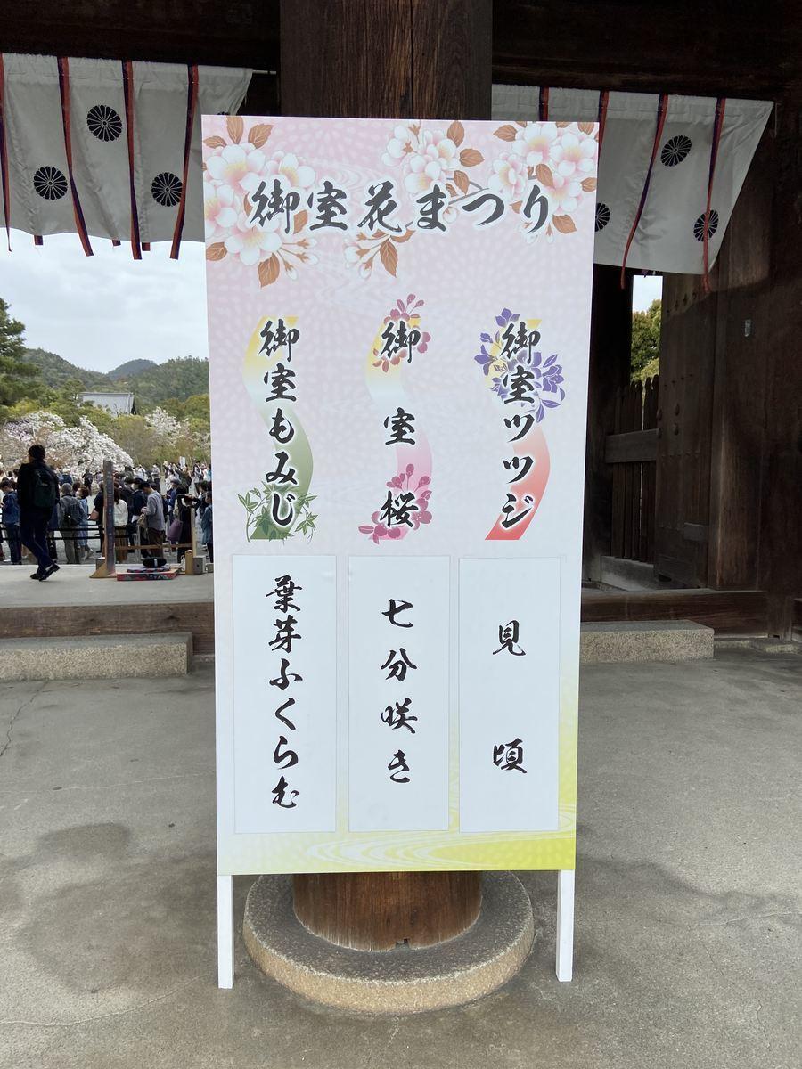 f:id:kyotoburari:20210404075530j:plain