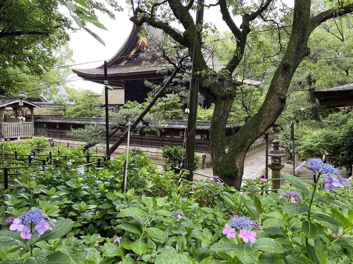 f:id:kyotoburari:20210620004626j:plain